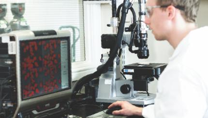 analysis diagnosis image